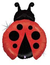 "Ladybug 27"" 1"